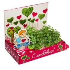Подарочный набор Вырасти любовь