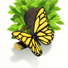 3D светильник Бабочка