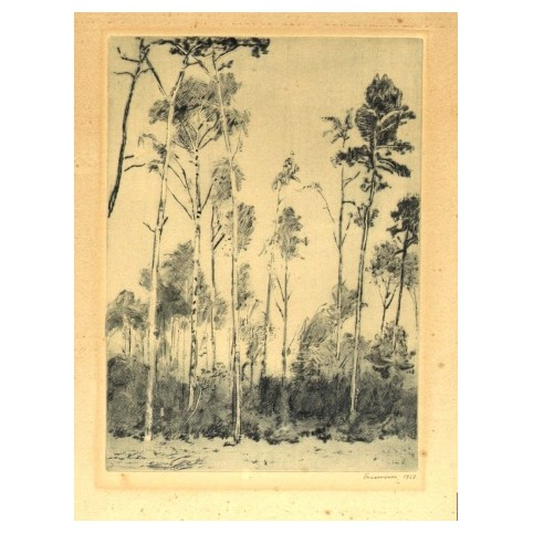 Гравюра «Высокие деревья»