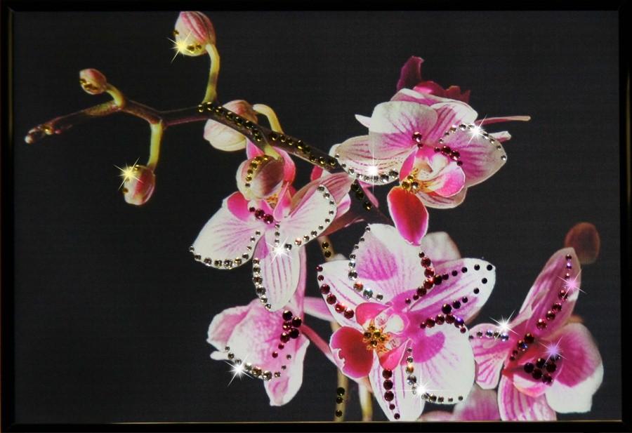 Картина с кристаллами Сваровски Маленькая орхидея