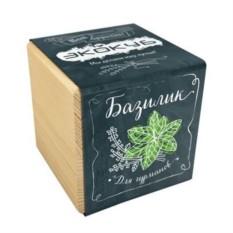 Эко-куб для выращивания Базилик