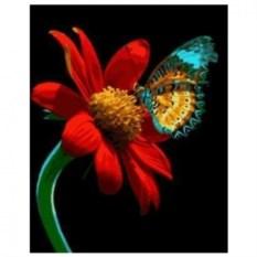 Картина-раскраска по номерам на холсте На цветке