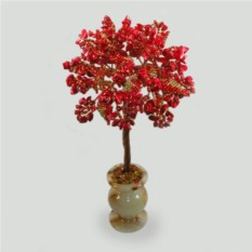 Дерево из коралла Коралловый мир