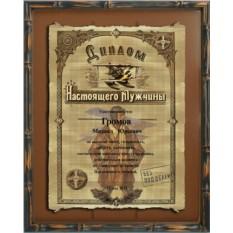 Папирус Диплом настоящего мужчины - летчику, 21х30см, рама
