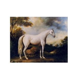 Картина «Лошадь белая»