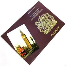 Обложка для паспорта из натуральной кожи Британия