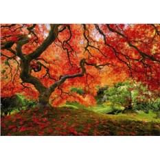 Пазл Educa Осень в японском саду (1500 шт.)