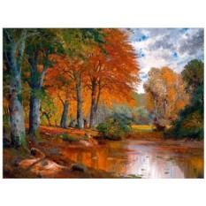 Картины по номерам «Пруд в осеннем лесу»