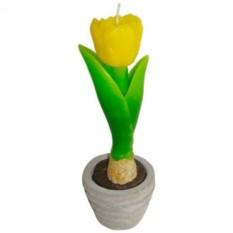 Свеча Тюльпан