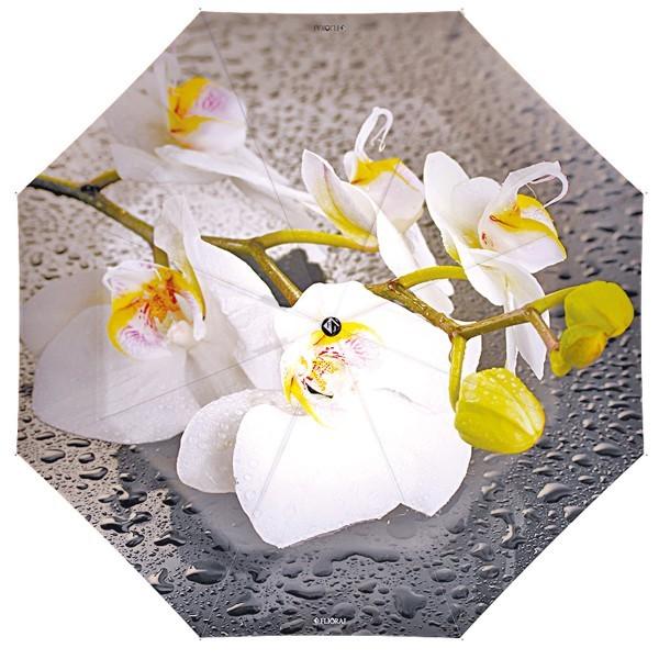 Зонт Flioraj Цветы