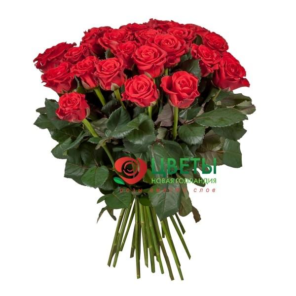 Букет цветов El Toro 51 шт.