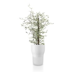 Белый горшок для растений с функцией самополива