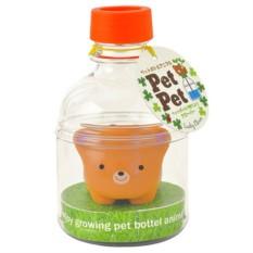 Набор для выращивания клевера Pet Pet Мишка