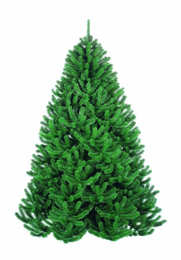 Сосна Триумф Величавая, зеленая, 200 см