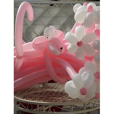 Ромашки розовые c пантерой