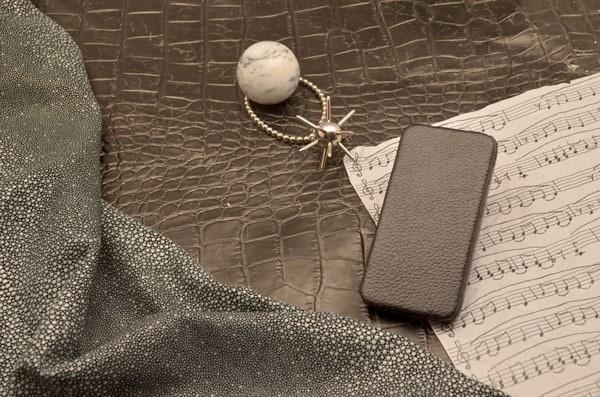Чехол-книжка для iPhone 5 / 5S «Черный стих» Remax