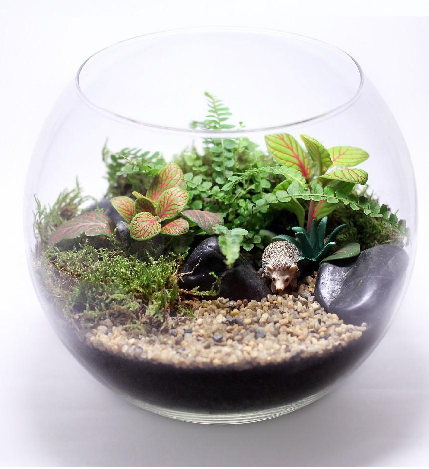 """Сад в стекле """"В лесу"""""""