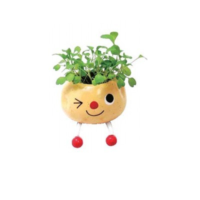 Набор для выращивания «Забавная руккола»