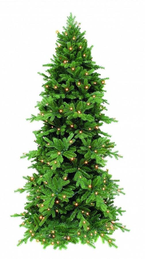Сосна Триумф Изумрудная, зеленая, с лампочками, 185 см