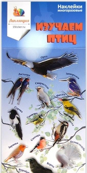 Наклейки для гаджета Птицы (Липляндия)