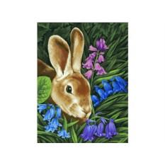 Картина по номерам «Кролик»