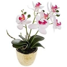 Декоративная композиция Нежная орхидея