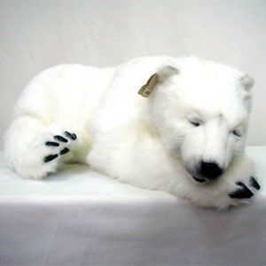 Спящий полярный медведь