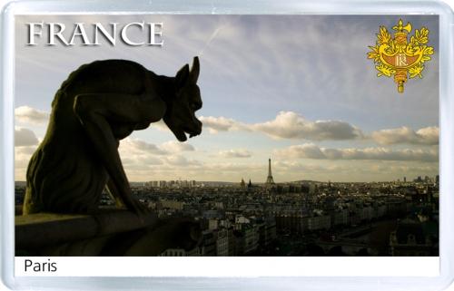 Магнит на холодильник: Франция. Вид на Париж