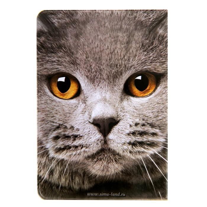 Обложка для паспорта Кот