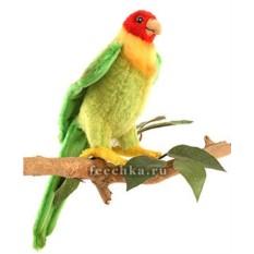 Мягкая игрушка Каролинский попугай от Hansa