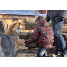 Сертификат Путешествие на оленью ферму: взрослый и ребенок