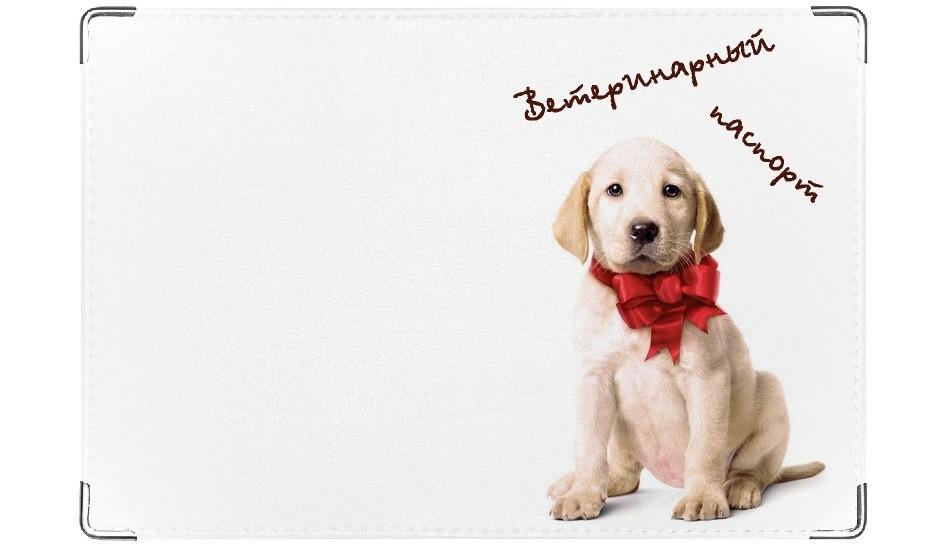 Обложка на ветеринарный паспорт Лабрадор