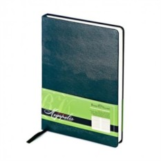 Недатированный зеленый ежедневник Megapolis A5
