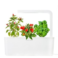 Набор для выращивания Умный сад (Томат, перец, базилик)