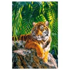 Картина-раскраска по номерам на холсте Тигр
