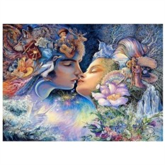 Картина-раскраска по номерам на холсте Анима и Анимус