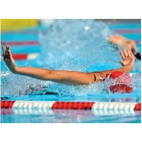 Подарочный сертификат Урок плавания