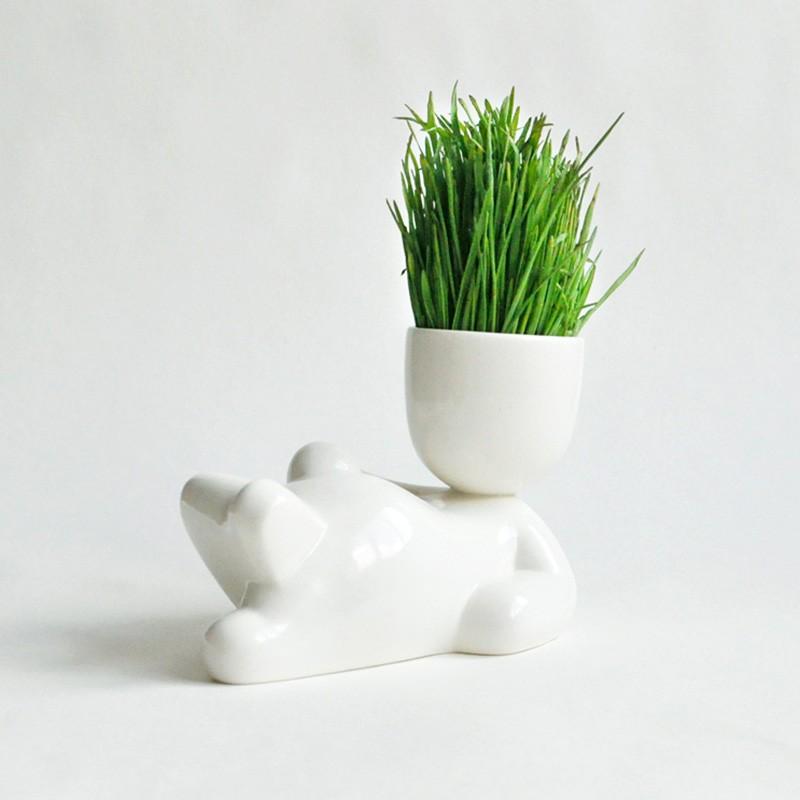 Набор для выращивания Eco Лентяй