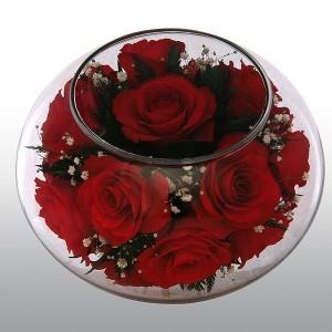 Живые цветы Роза небес