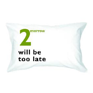 Наволочка «Завтра будет слишком поздно»