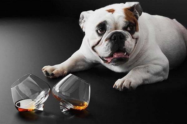 Бокалы Liqueur Glasses 2 шт