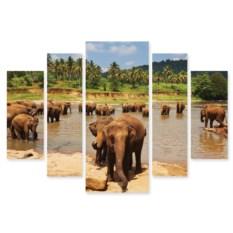Модульная картина Слоны на водопаде