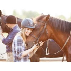 Сертификат Романтическая прогулка на лошадях для двоих