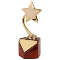 Наградная стела Звезда