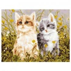 Картина-раскраска по номерам на холсте Два котёнка