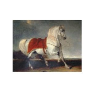 Картина «Арабский конь»