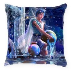 Подушка Знак зодиака-Водолей