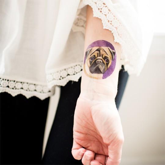 Татуировка переводная Sasha Unisex Pug