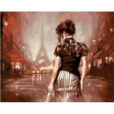 Картины по номерам «Парижские ночи»