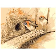 Картины по номерам «Райские птицы»